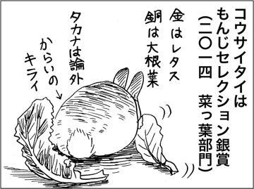 kfc00245-5