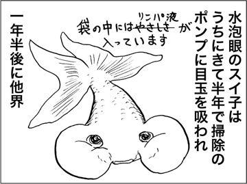 kfc00277-7