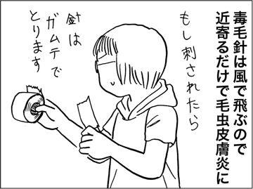 kfc00316-6