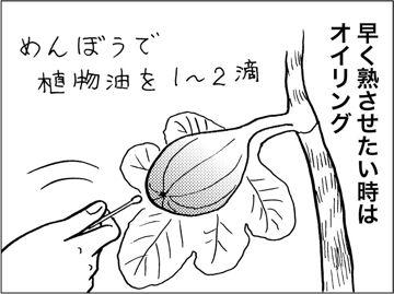kfc00317-7