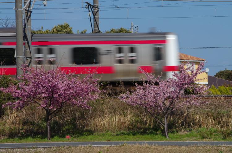 2015年3月6,12日 武蔵野線 さざなみ 106