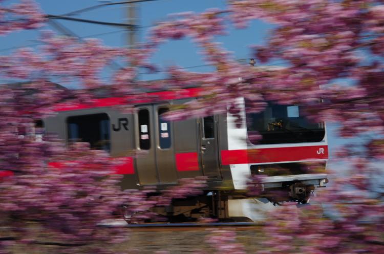 2015年3月6,12日 武蔵野線 さざなみ 082