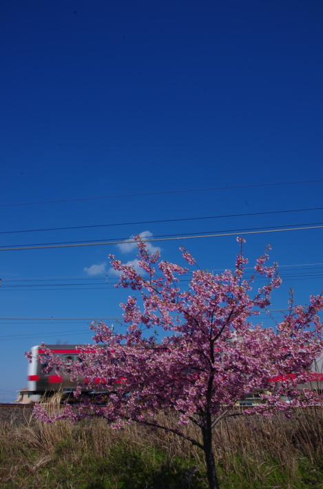 2015年3月6,12日 武蔵野線 さざなみ 086