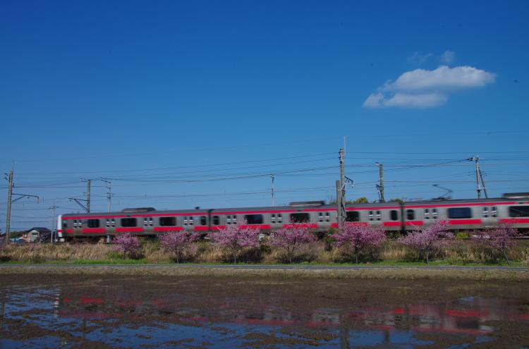 2015年3月6,12日 武蔵野線 さざなみ 101