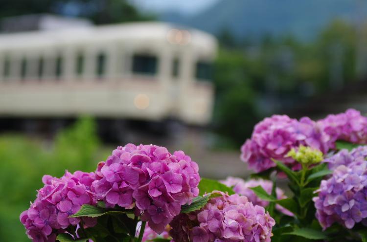 2015年7月4,5日 富士急 017