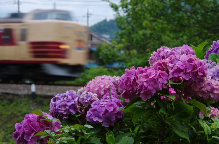 2015年7月4,5日 富士急 042