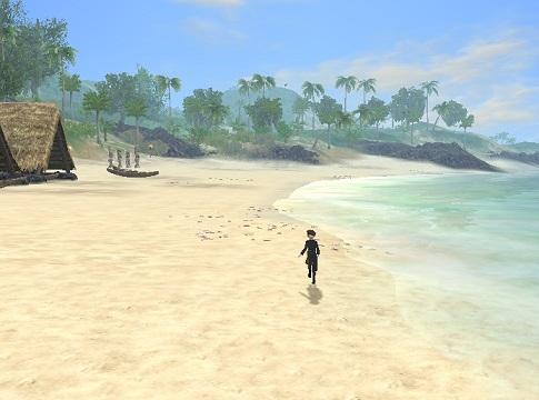 ハワイのビーチ5