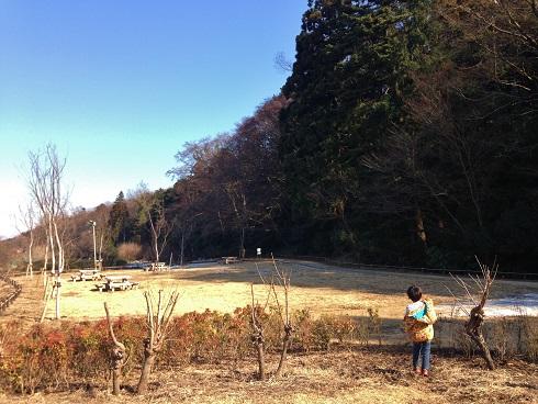 新野山北①