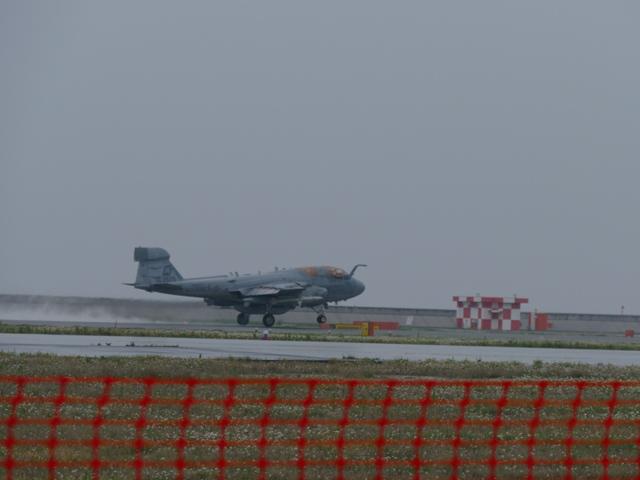 Pfz1010096.jpg