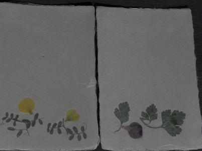 草花入り和紙