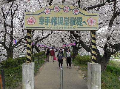 桜堤の入口