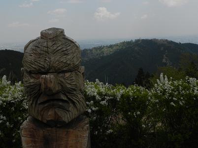 城山から見た高尾山
