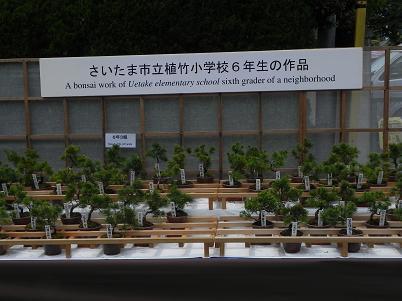植竹小学校の作品