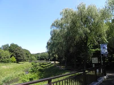5月野川自然観察園前