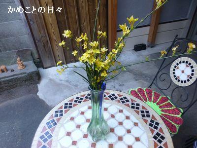 P1190044-yamato hana