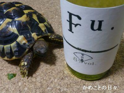 P1190473^sake