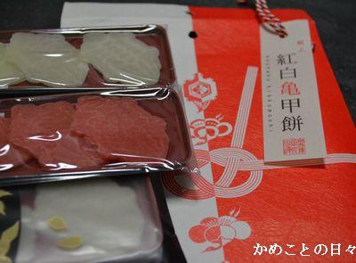 DSC_0951-m.jpg