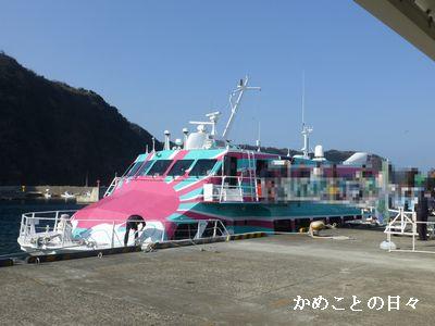 P1170337-t.jpg