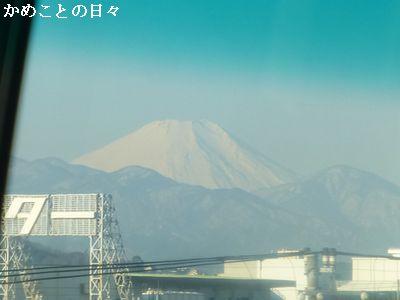 P1170755-f.jpg