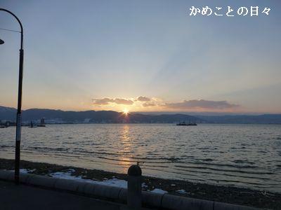 P1170841-y.jpg
