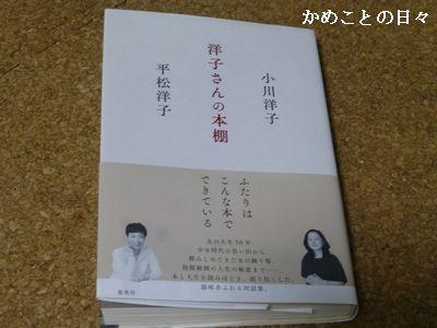 P1170987-y.jpg