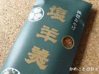 P1180342-y.jpg