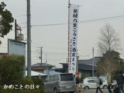 P1180598-k.jpg