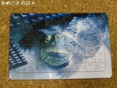 P1180811-p.jpg