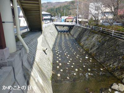 P1190004-river.jpg