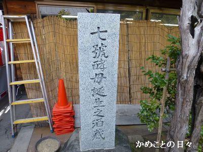 P1190009-nana.jpg