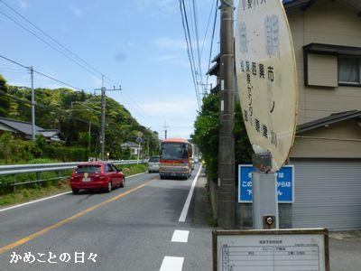 P1200736-umi.jpg