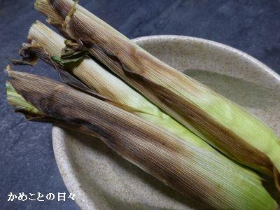 P1220068-corn.jpg