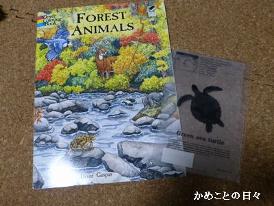 P1230386-book.jpg