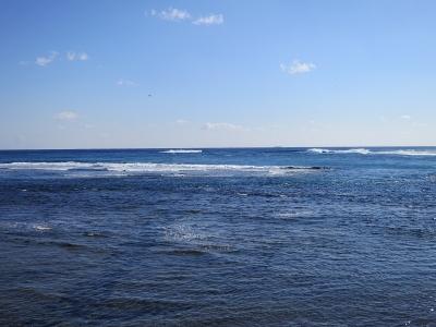 02-06 今日の海