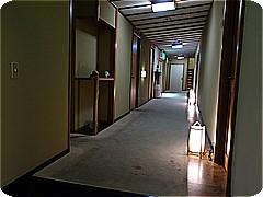 syk9156.jpg