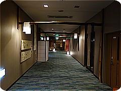 syn3551.jpg