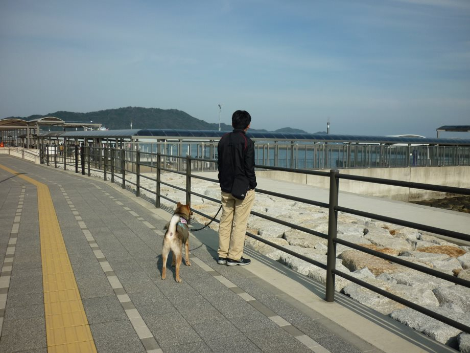 201501鳥羽港01-08