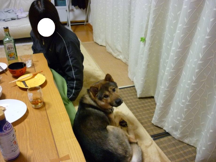 201502るんしゃん-01