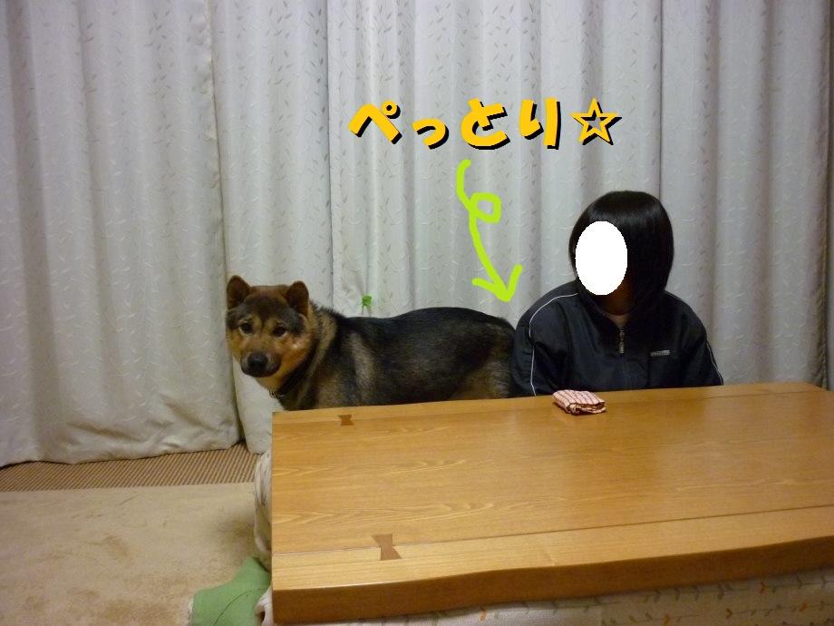 201502るんしゃん-10