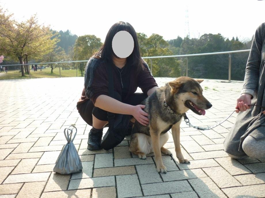 201504あきちゃん三姉妹02-11