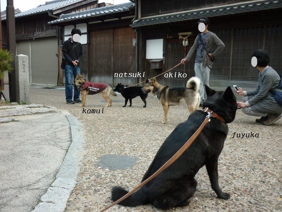 201504あきちゃん三姉妹03-11