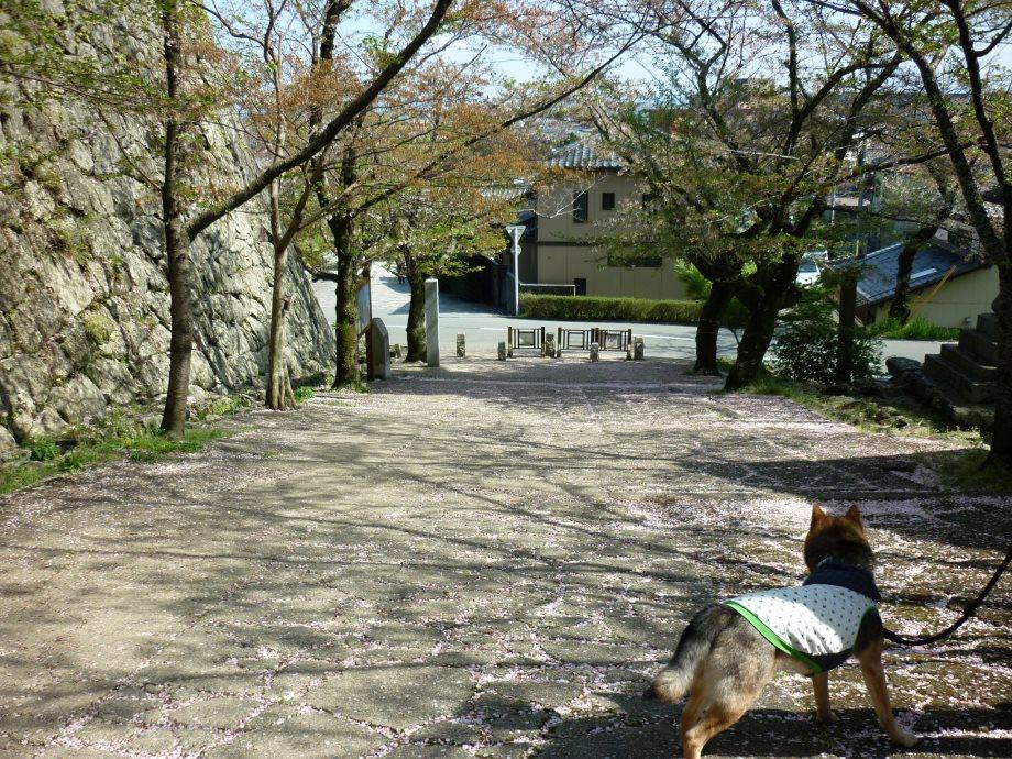 201504松阪02-04