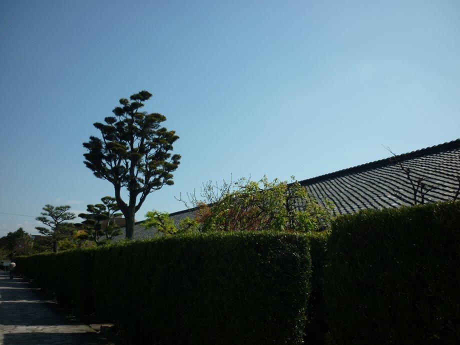 201504松阪02-07