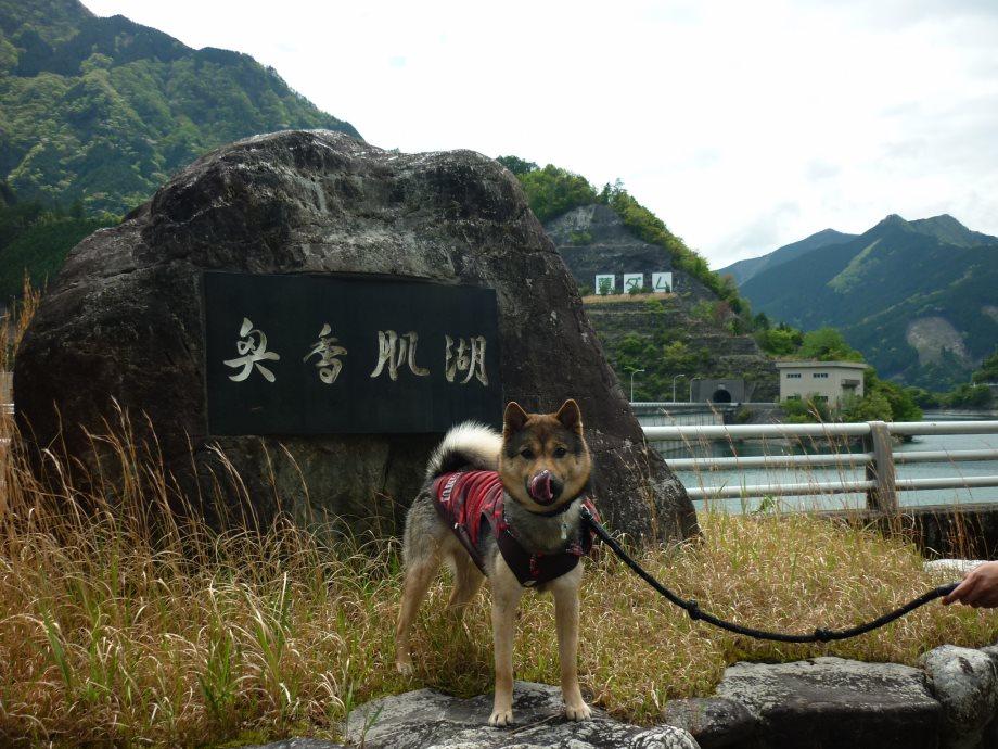 201505蓮ダム01-07