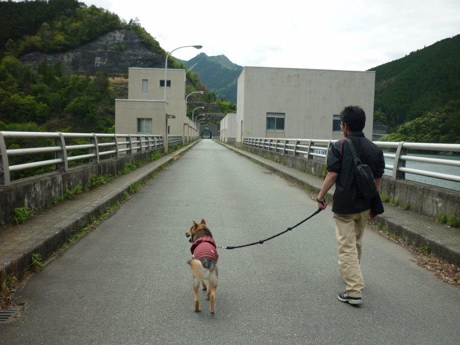 201505蓮ダム02-10