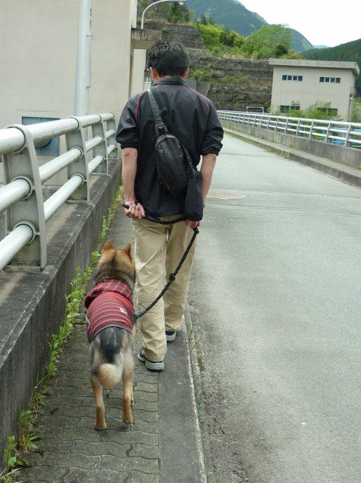 201505蓮ダム02-11