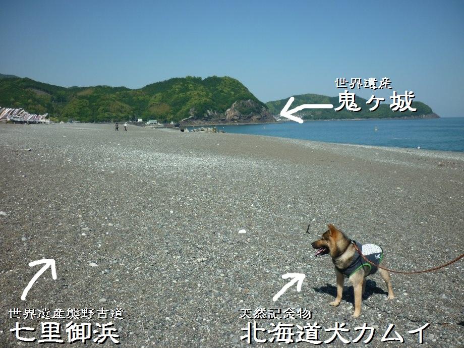 201505熊野3-13
