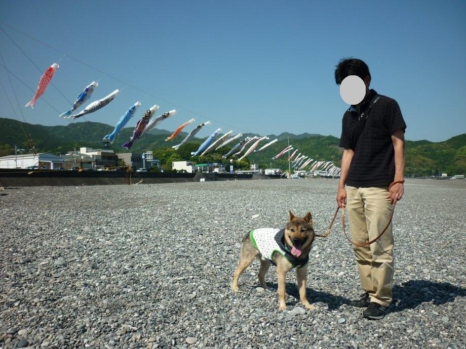 201505熊野4-06
