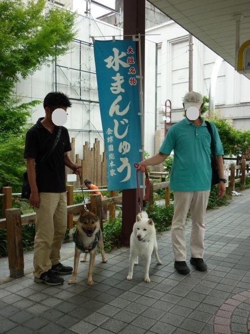 201505岐阜西濃の旅05-24