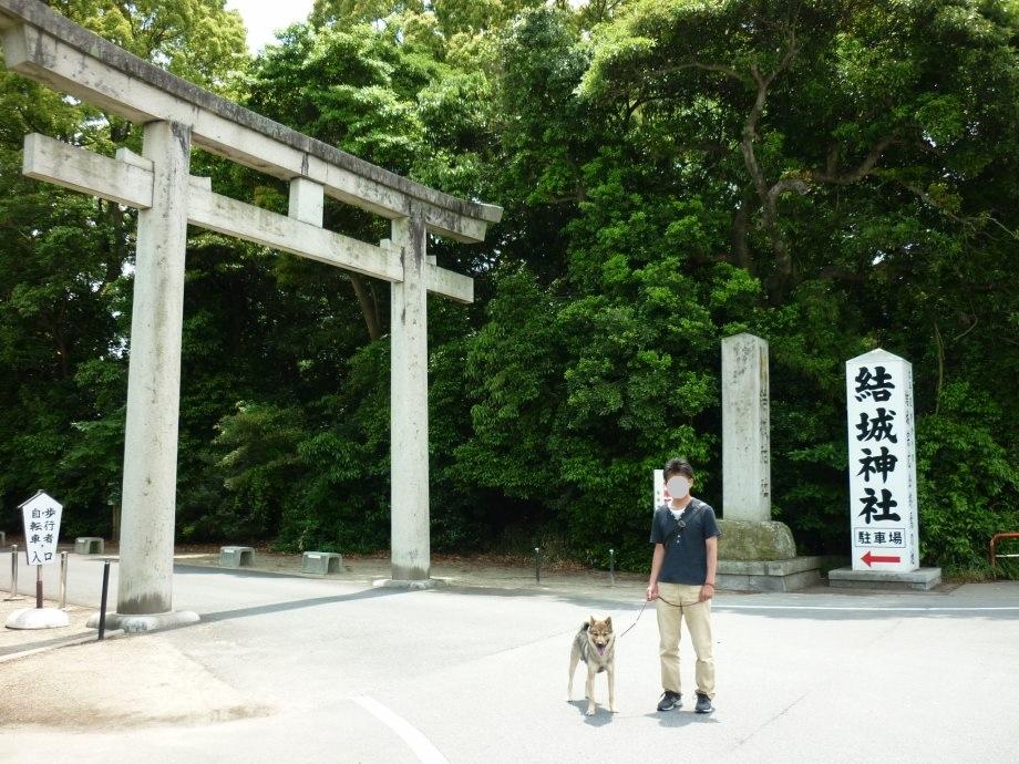 201505紀州犬審査会見学-01